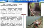 Рекомендации по тушению торфяных пожаров на осушенных болотах