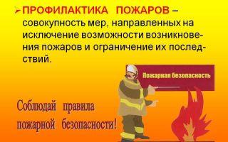 Профилактика пожаров в школе (учебно-методическое пособие).