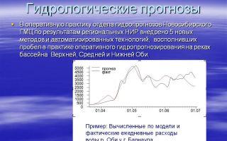 Гидрологический прогноз (краткосрочный, долгосрочный)