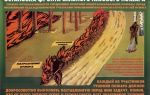 Рекомендации по применению сил для тушения лесных пожаров