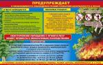 Пожароопасный период: безопасность, подготовка и штрафы