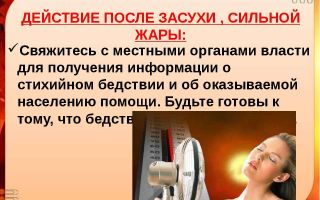 Декларация пожарной безопасности: что это, примеры и образцы
