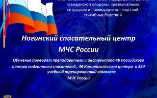 Дальневосточный региональный центр по делам гражданской обороны, чрезвычайным ситуациям и ликвидации последствий стихийных бедствий (дврц мчс россии)