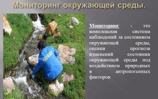 Наблюдение за окружающей средой (мониторинг окружающей среды)