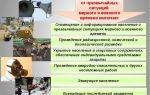 Комплексная защита населения в чрезвычайной ситуации (чс)