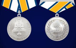 Медаль мчс «за пропаганду спасательного дела»