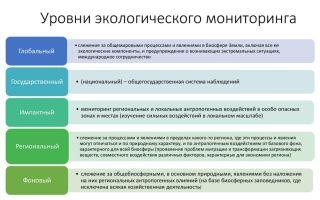 Комплексный (геосистемный) мониторинг (мониторинг окружающей среды)