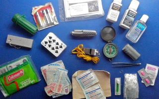 Походная аптечка туриста: состав (содержимое) и требования
