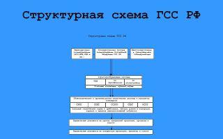 Газоспасательная служба. структура, основные задачи и функции.