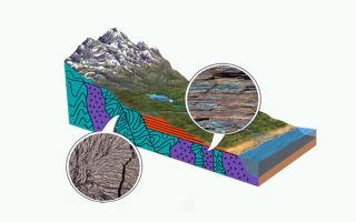 Геологическая (тектоническая) структура. типы, классификация, категории.
