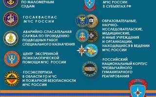 История создания и развития мчс россии. силы мчс россии